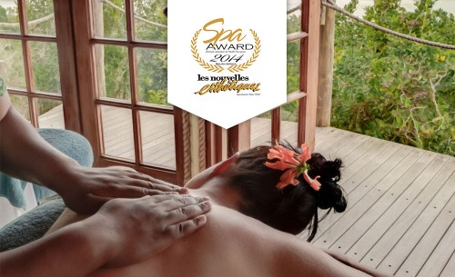 les nouvelles spa award 2014 women with flower in hair getting a back massage